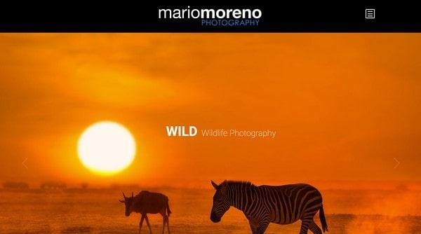 Mario Moreno Photography